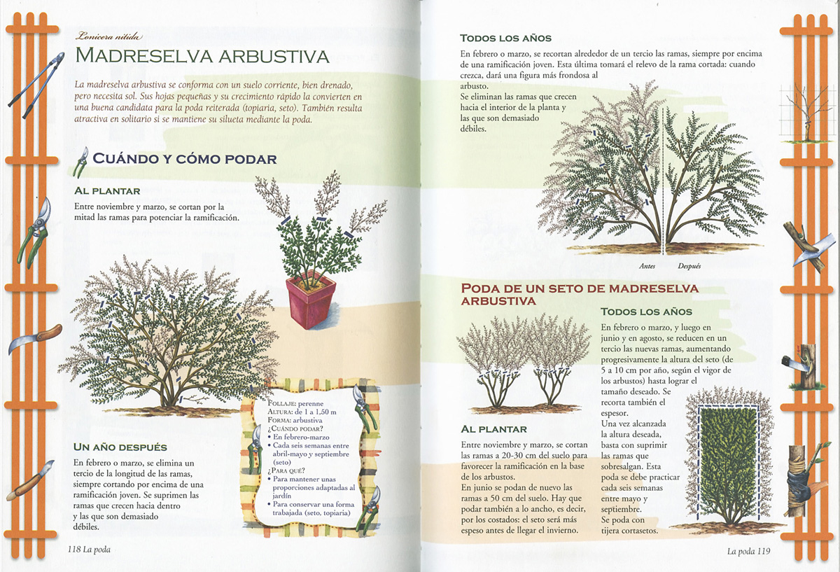 Jardiner a libros servilibro ediciones gran libro de - Libros sobre jardineria ...